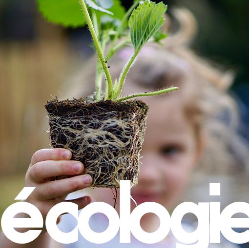 deuxieme pillier edeni : l'ecologie