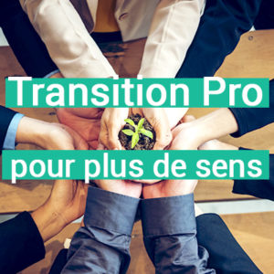 CLASSE VIRTUELLE TRANSITION PROFESSIONNELLE DE SENS - IKIGAI